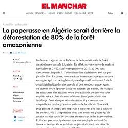 La paperasse en Algérie serait derrière la déforestation de 80% de la forêt amazonienne