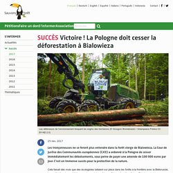 Victoire ! La Pologne doit cesser la déforestation à Bialowieza