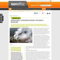 D forestation : les incendies plongent l'Asie dans le brouillard