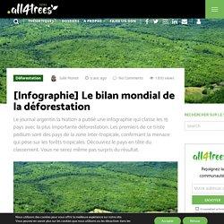 Le bilan mondial de la déforestation : le Brésil en tête du classement !