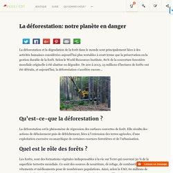 La déforestation: notre planète en danger - Ecoclicot - Pour une consommation responsable