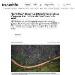 """""""Earth Hour"""" 2021 : """"La déforestation continue d'avancer à un rythme alarmant"""", alerte le WWF"""