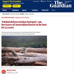 'Global deforestation hotspot': 3m hectares of Australian forest to be lost in 15 years