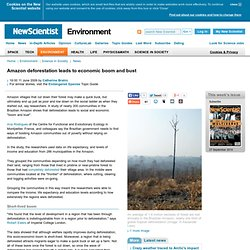 Amazon deforestation leads to economic boom and bust - environment - 11 June 2009