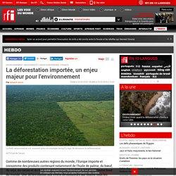 La déforestation importée, un enjeu majeur pour l'environnement - Hebdo