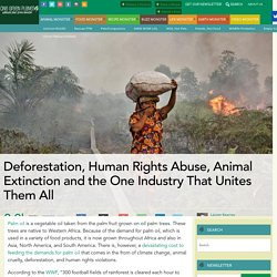 Deforestation, Human Rights Abuse, Animal Extinction and the One Industry That Unites Them All