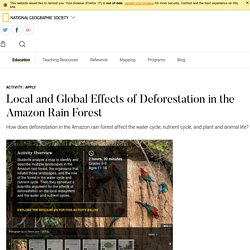 Local and Global Effects of Deforestation in the Amazon Rain Forest - National Geographic Society