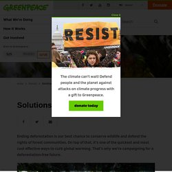 Solutions to Deforestation - Greenpeace USA