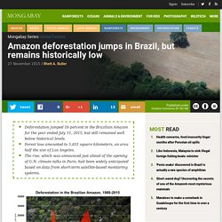 Amazon deforestation jumps in Brazil, but remains historically low