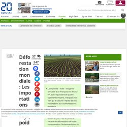 Déforestation mondiale: Les importations de soja, poids-lourds de l'empreinte «forêt» de la France
