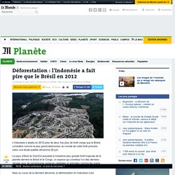 Déforestation : l'Indonésie a dépassé le Brésil en 2012