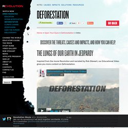 Deforestation Intro - Revolution
