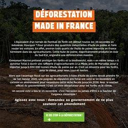 Déforestation made in France