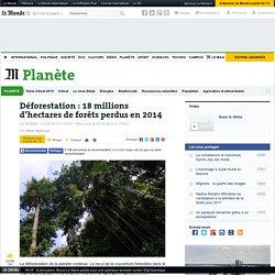 Déforestation: 18millions d'hectares de forêts perdus en2014