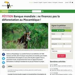 Banque mondiale: ne financez pas la déforestation au Mozambique