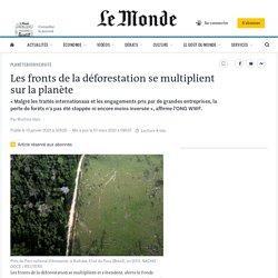 Les fronts de la déforestation se multiplient sur la planète