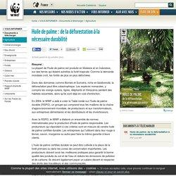 WWF - NOV 2011 - Huile de palme – de la déforestation à la nécessaire durabilité