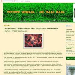 """Vetiver Senegal: La lutte contre la déforestation avec """" Charbon vert """" de vétiver et d'autres matières organiques"""