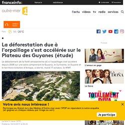 La déforestation due à l'orpaillage s'est accélérée sur le Plateau des Guyanes (étude)