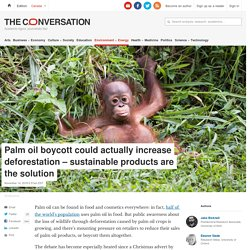 Palm oil boycott could actually increase deforestation – sustainable products are the solution
