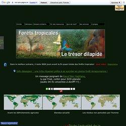 Demain l'Homme, ex SOS-planete : Déforestation : Les forêts vierges tropicales, l'Amazonie, l'Afrique, l'Asie...