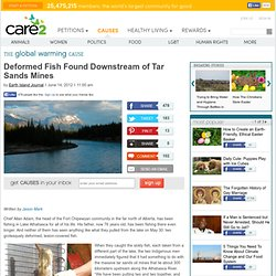 Deformed Fish Found Downstream of Tar Sands Mines