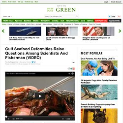 Gulf Seafood Deformities Raise Questions Among Scientists And Fisherman