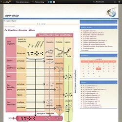 05_L'appareil digestif - La digestion… - La digestion _… - La déglutition - Histologie du tube… - L'appareil digestif… - Le blog de jerome harlé