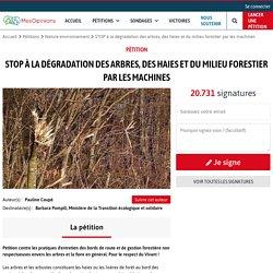 STOP à la dégradation des arbres, des haies et du milieu forestier par les machines