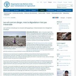 FAO -Nouvelles:Les sols sont en danger, mais la dégradation n'est pas irréversible