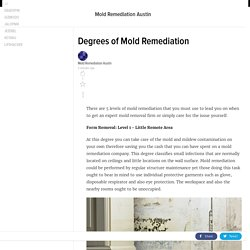 Degrees of Mold Remediation