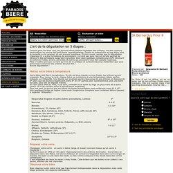 Dégustation de bières : apprenez à déguster vos bières !