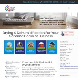 Dry Out & Dehumidification Services Alabama - Residential & Commercial