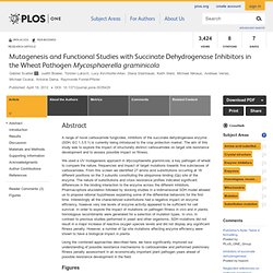 PLOS 19/04/12 Mutagenesis and Functional Studies with Succinate Dehydrogenase Inhibitors in the Wheat Pathogen Mycosphaerella gr