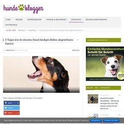 5 Tipps wie du deinem Hund häufiges Bellen abgewöhnen kannst