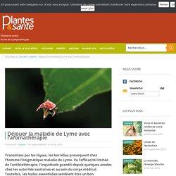 Déjouer la maladie de Lyme avec l'aromathérapie - soigner - Plantes & santé