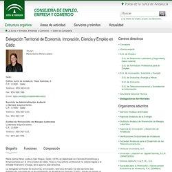 Delegación Territorial en Cádiz - Consejería de Empleo, Empresa y Comercio - Junta de Andalucía