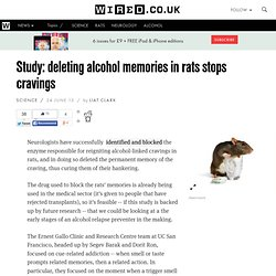 Study: deleting alcohol memories in rats stops cravings