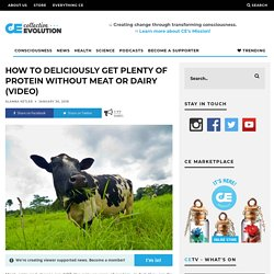 How To Deliciously Get Plenty Of Protein Without Meat Or Dairy (Video)