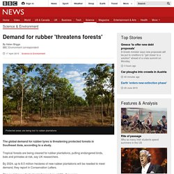 Demand for rubber 'threatens forests' - BBC News