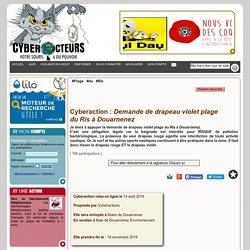 Demande de drapeau violet plage du Ris à Douarnenez cyberaction