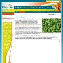 Démarche qualité - La filère des plantes de santé, de beauté et de bien-être