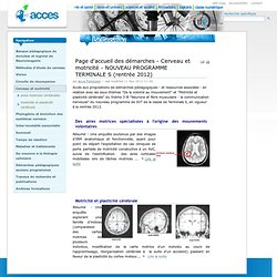 Page d'accueil des démarches - Cerveau et motricité - NOUVEAU PROGRAMME TERMINALE S (rentrée 2012)