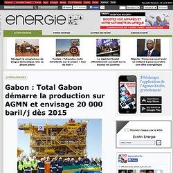 Gabon: Total Gabon démarre la production sur AGMN et envisage 20 000 baril/j dès 2015