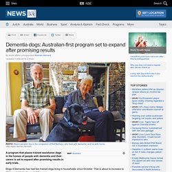 Dementia dogs: Australian-first program set to expand after promising results