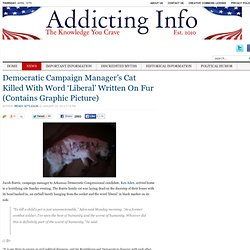Democratic Campaign Manager's Cat Killed With Word 'Liberal' Written On Fur (Contains Graphic Picture)