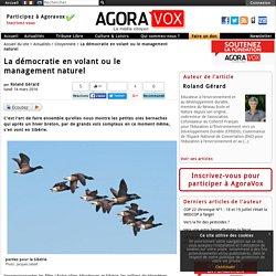 La d�mocratie en volant ou le management naturel - AgoraVox le m�dia citoyen