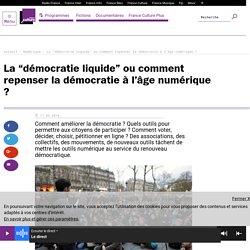 """La """"démocratie liquide"""" ou comment repenser la démocratie à l'âge numérique ?"""