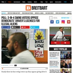 Poll: 3-in-4 Swing Voters Oppose Democrats' Driver's Licenses for Illegals