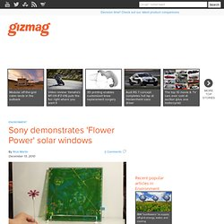 Sony demonstrates 'Flower Power' solar windows